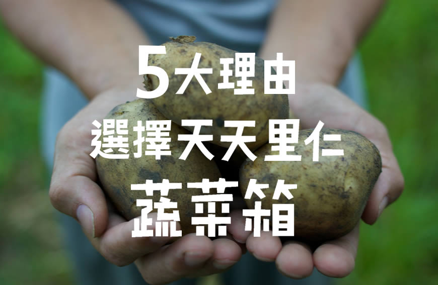 天天里仁蔬菜箱的5大理由