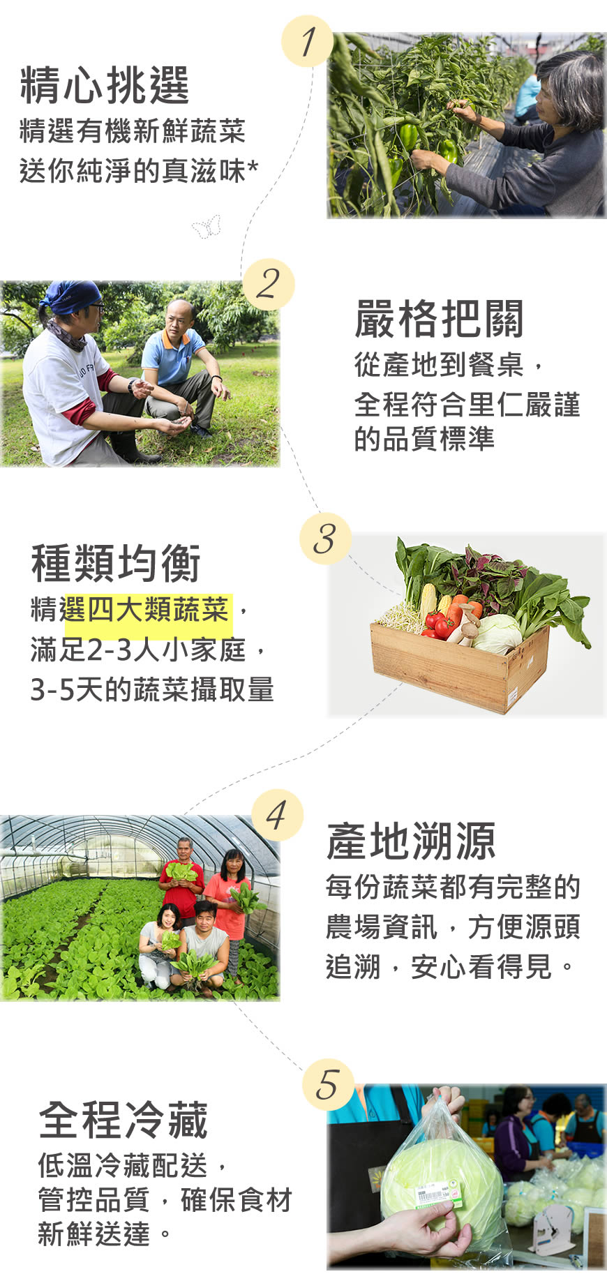 天天里仁有機蔬菜箱5大理由