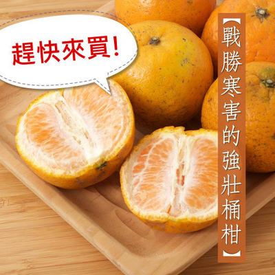 里仁有機橘子桶柑