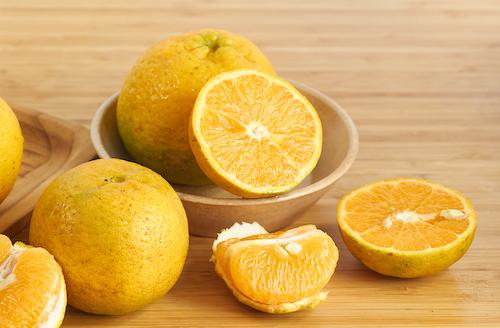 有機桶柑有機橘子